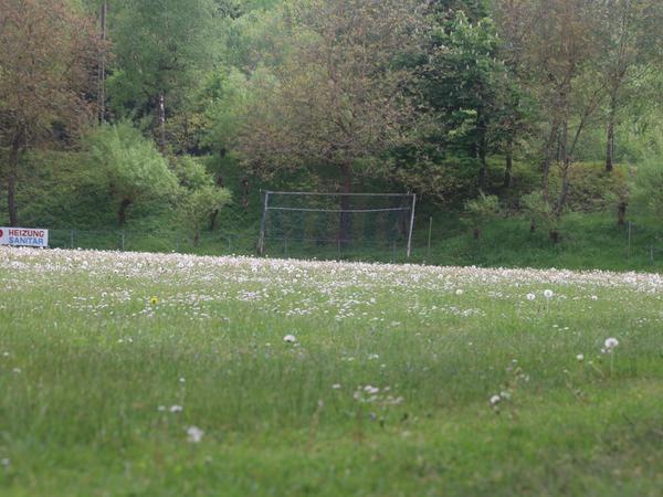 Die Natur hatte sich den A-Platz zurückerobert - doch inzwischen sanieren Gärtner das Gelände.