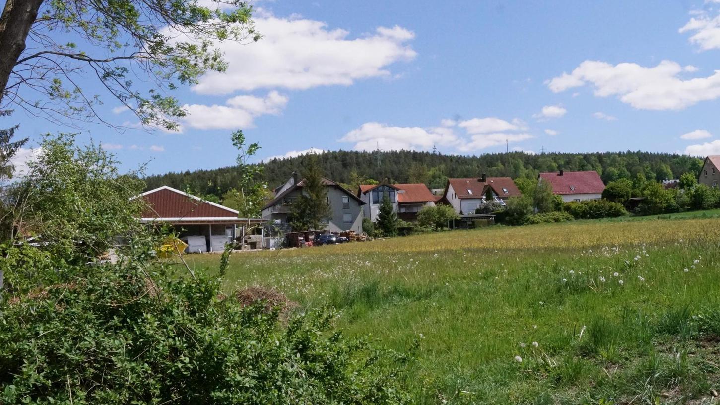 Vier Bauparzellen sollen auf dieser Wiese an der Dornbacher Straße entstehen. Die Erschließung dafür übernimmt Siegfried Neukam.