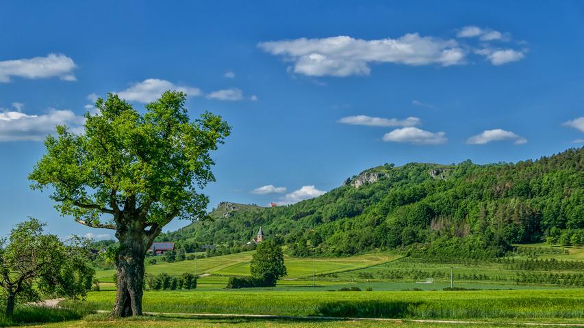 Berg der Franken: Die schönsten Bilder vom Walberla