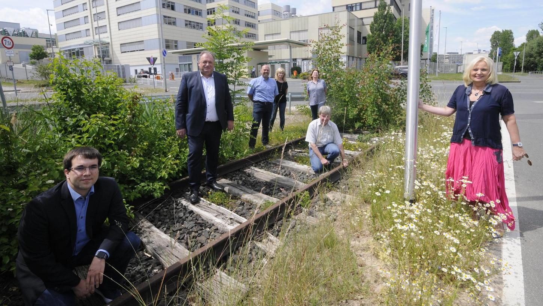 Zeit ist reif zum Prüfen, meinen (v. l.) Konrad Körner, Walter Nussel, Walter Drebinger, Birgit Süß, Inge Weiß, Manfred Welker und Sabine Hanisch.