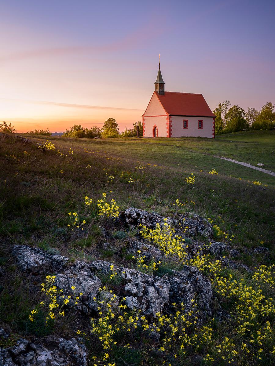 Motiv: Kirchehrenbach, Ehrenbürg, Walberla Walburgis Kapelle mit Blumenwiese..Foto: Reinhold Ludwig, reinhold.ludwig@belichtungsquartier.de, 06/2020