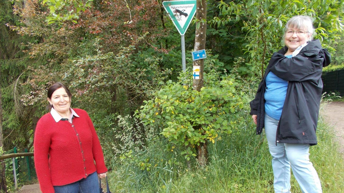 Ortstermin an der Schwarzachklamm: Petra Hopf (li.), 2. Bürgermeisterin von Schwarzenbruck, und Ursula Siebenlist vom Bund Naturschutz beklagen, die Naturschutzgebiet-Schilder seien zu unauffällig platziert.