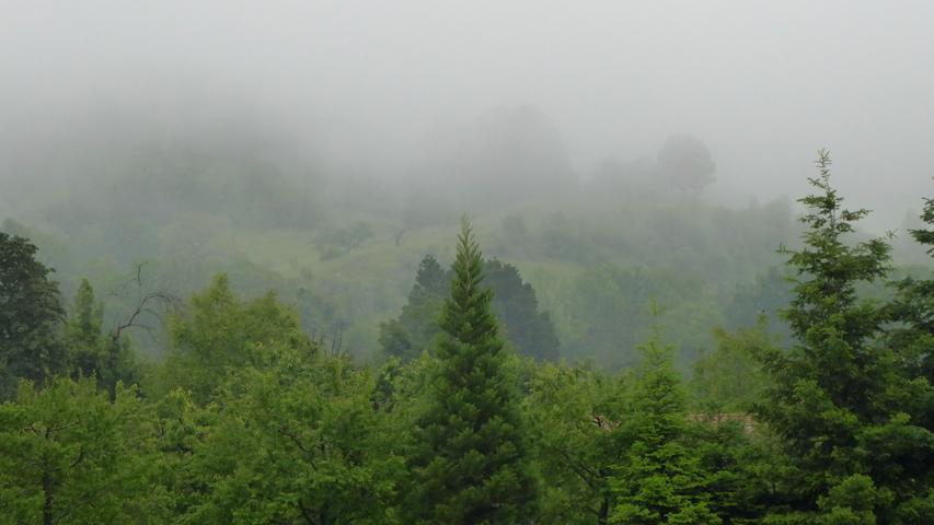 Wo ist denn hier das Walberla? Es ist hinter dem Nebel versteckt.