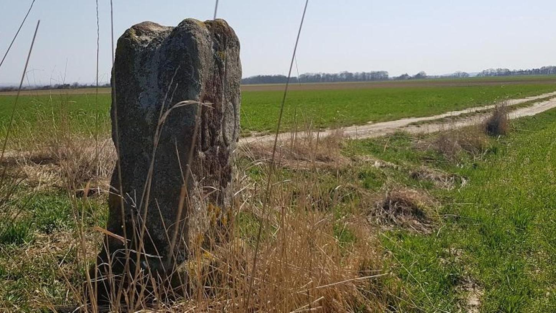 Ein alter Grenzstein am Wegesrand: Jede der eingeschlagenen Markierungen hat eine Bedeutung. BO steht für Brandenburg-Onolzbach.