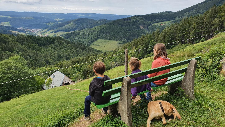 Panoramablick über den südlichen Schwarzwald. 2020 und auch im kommenden Jahr wird für viele Urlaub in Deutschland angesagt sein.