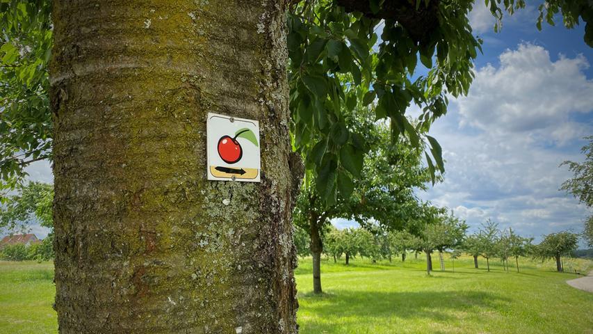 Infotafeln auf dem Weg lassen keine Zweifel offen. Das erste Etappenziel mit seinen zahlreichen idyllischen Kirschgärten ist nicht mehr weit.