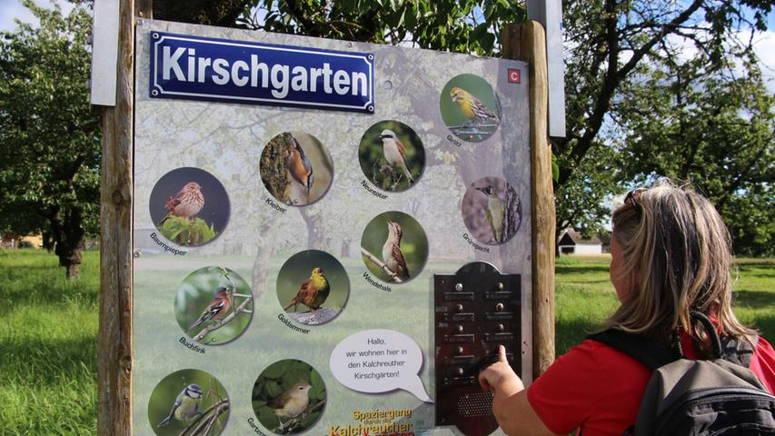 Die Gegend ist auch ein Paradies für viele Singvögel. Auf Knopfdruck kann man sich deren spzielle Gesänge anhören.