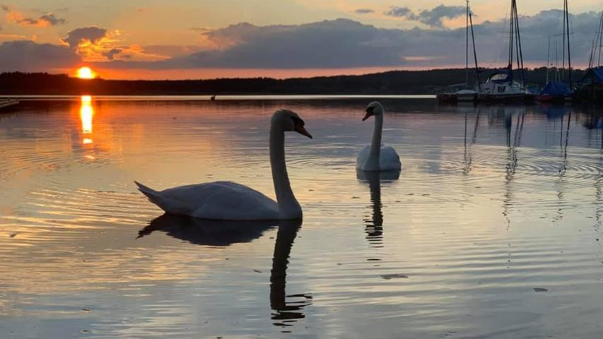 Ein Sommer am Rothsee: Die schönsten Bilder unserer Leser
