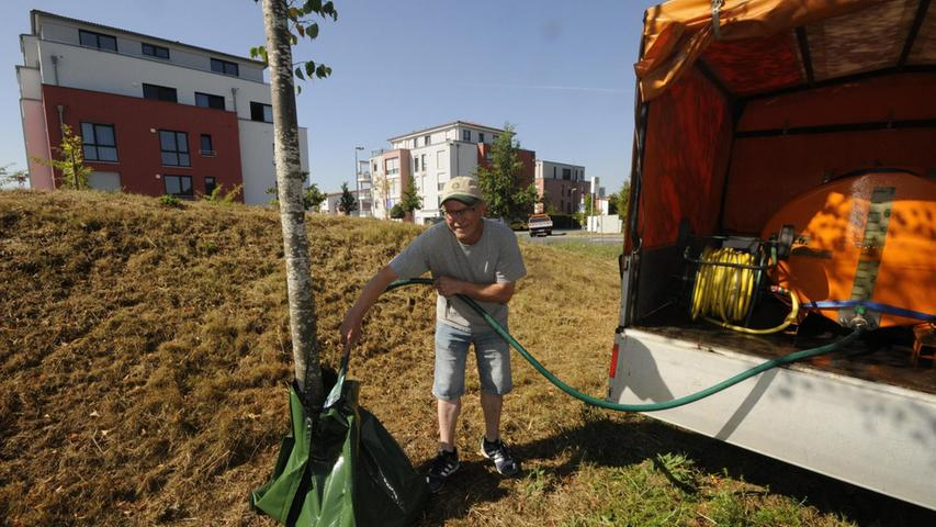 Fritz Bayer vom Baubetriebshof gießt eine junge Linde nahe der Münchner Straße.