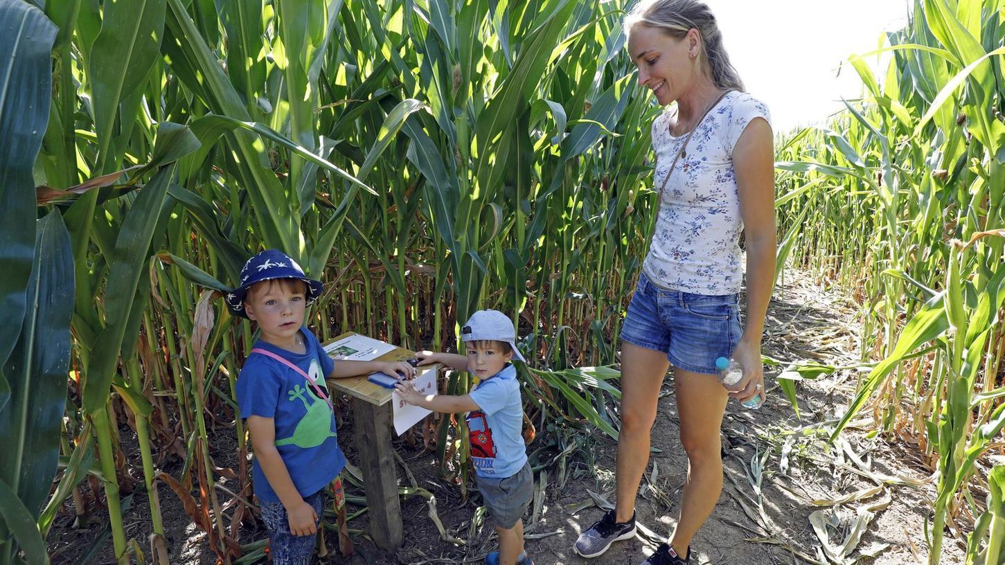 Corinna Meister, die Tochter von Christine und Markus Galster, geht auch mit ihren beiden Söhnen oft in das Maislabyrinth.