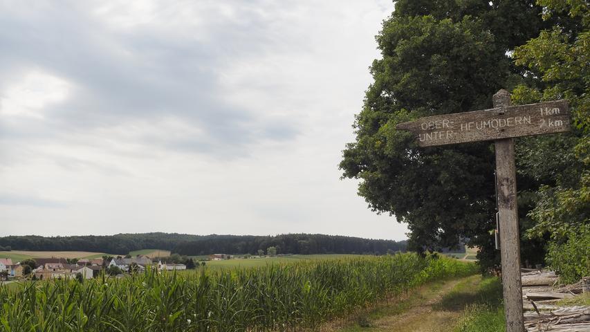 Die Orte Ober- und Unterheumödern sehen wir von oben und gehen am Waldrand an ihnen vorbei.