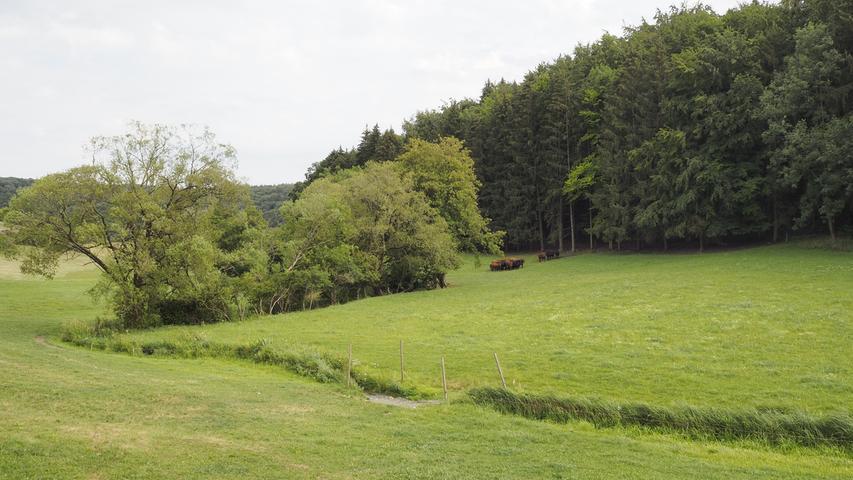 Die Rohrach schlängelt sich durch ihr Tal.