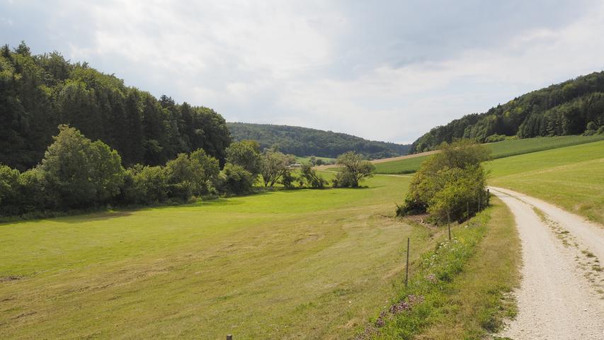 Von Windischhausen aus verläuft der Wanderweg auf Schotterpisten, Schatten gibt es kaum.