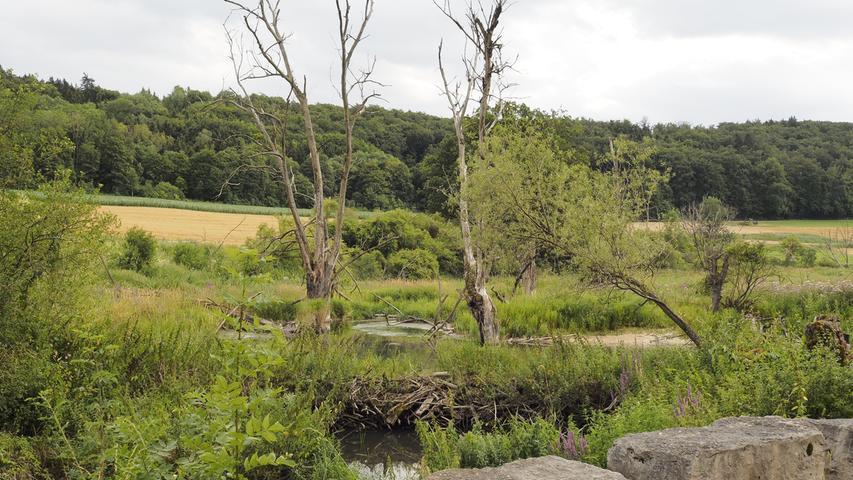 Hier gibt es auch eine Brücke mit Steinblöcken für eine kurze Rast.