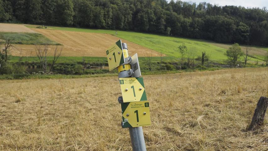 Der Weg Nummer ein bringt uns zum Ziel, vom Schotterweg bei der Brücke müssen wir den Hang nach oben abzweigen.