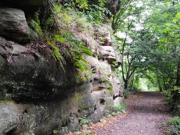 Sandstein gibt es auf unserer Tour in allen Formen zu sehen.