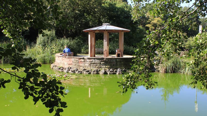 Es kommt von der Espanquellein der etwas versteckt liegenden Parkanlage Kleine Mainau, wohl einer der schönsten Plätze der Stadt.