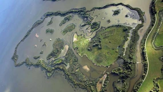 Ein Aushängeschild des Landesbunds für Vogelschutz und des Fränkischen Seenlands insgesamt ist die Vogelinsel im Altmühlsee. Auch dort gibt es neben den vielen vernünftigen und rücksichtsvollen Besuchern einige, denen Regeln und Verbote vollkommen egal erscheinen.