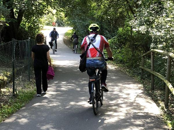 An manchen Stellen geht es entlang des Pegnitztalwegs gefährlich eng für Radler und Fußgänger zu – wie hier in Schniegling kurz nach der Nürnberg-Fürther Stadtgrenze.