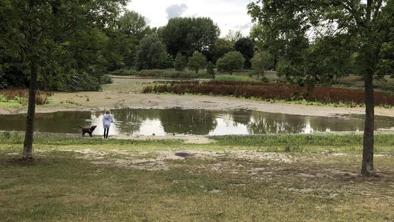 Sör arbeitet an Studie: Warum vertrocknet der See im Marienbergpark?