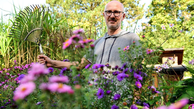 In bunten Farben präsentieren sich derzeit noch die Astern in Ulrich Voglers Garten. Bald wird er sie teilen und in andere Beete versetzen.