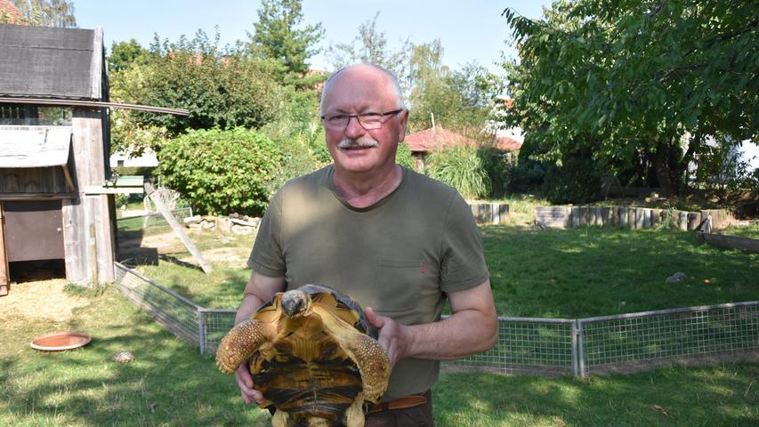 Wenn Ottmar Brunner im Kreise seiner Schildkröten ist, ist er glücklich. Mehrere hundert hat er davon.