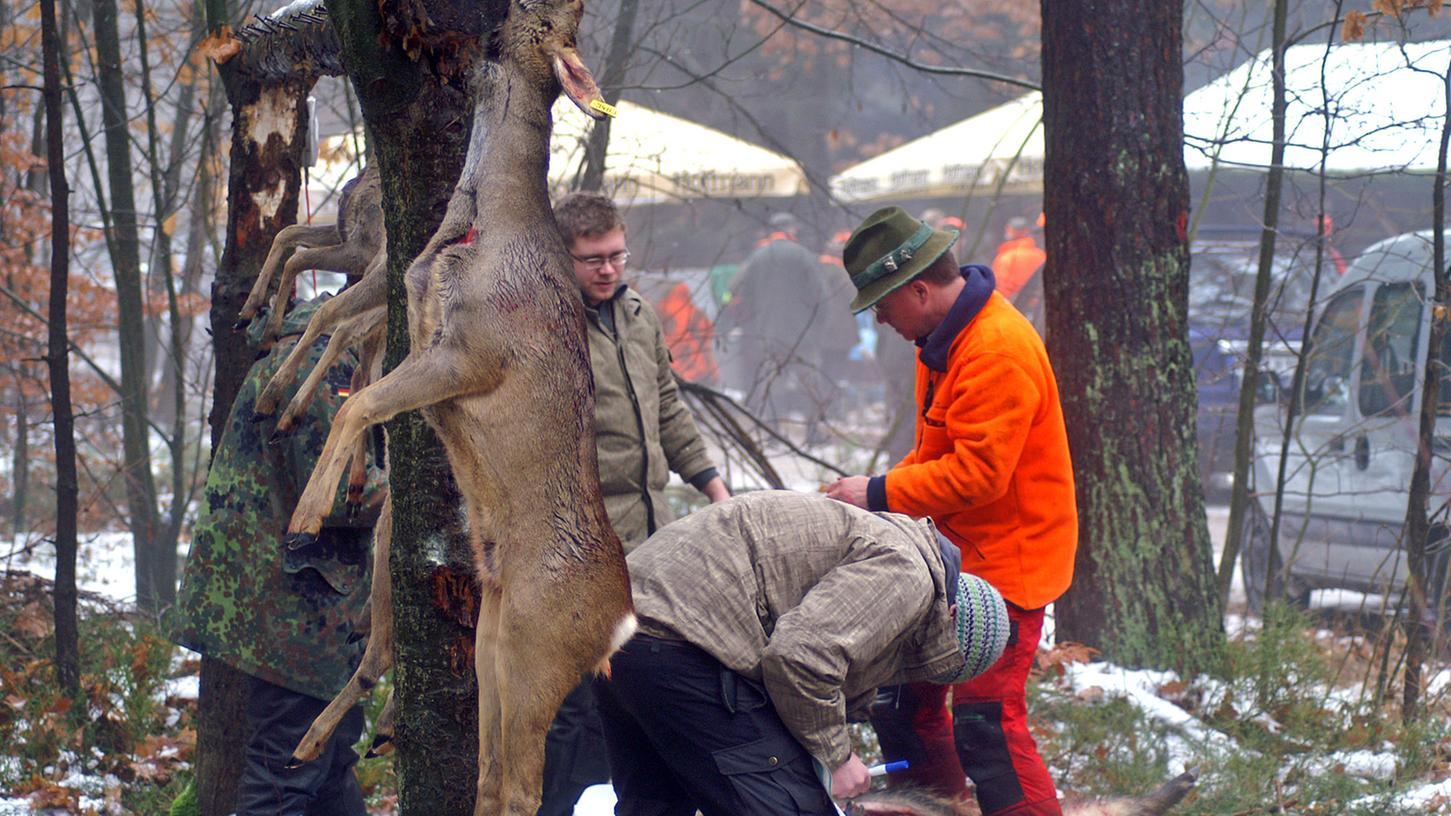 Die Abschusszahlen für Reh und Hirsch sind in den letzten Jahren gestiegen. Doch Vertreter von Bund Naturschutz und ökologischem Jagdverband sowie einige Waldbesitzer sind dafür, die Abschussquoten noch einmal deutlich anzuheben, um dem Verbiss vorzubeugen.