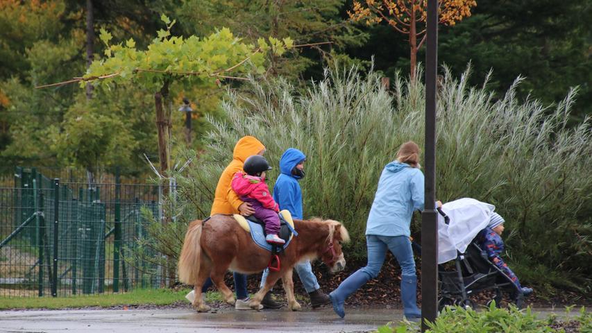 ...oder auf dem Pony reiten - bei Center Parcs ist alles auf Kinder ausgerichtet.