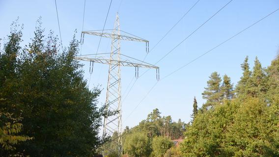 Die bestehende Leitung erläuft bei Wolkersdorf durch den Wald und auch nahe an der Bebauung. Wird sie ertüchtigt, müssen auch Bäume weichen.