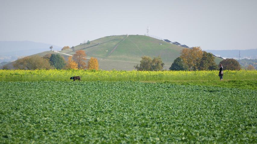 Berauschend bunt präsentiert sich die Natur rund um Atzenhof, Ritzmannshof und Vach