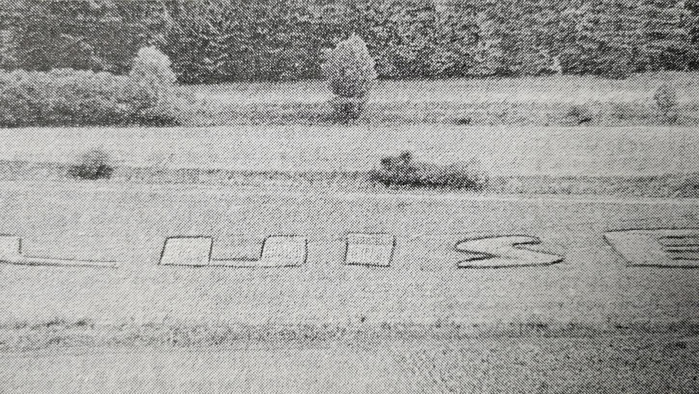 Mit Raps und Ackersenf malte Richard Zäh 1970 den Namen seiner Angebeteten Luise auf den Hang des Treuchtlinger Nagelbergs.