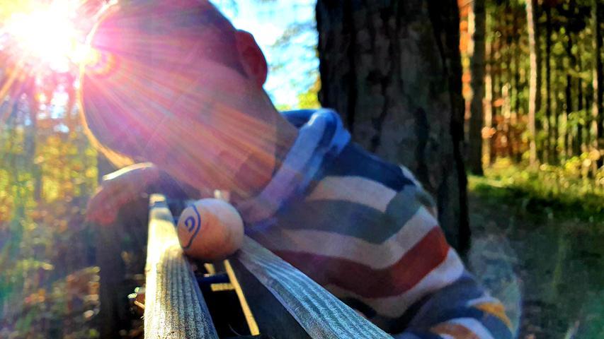 Der Star der Kinder ist die Kugelbahn im Wald.