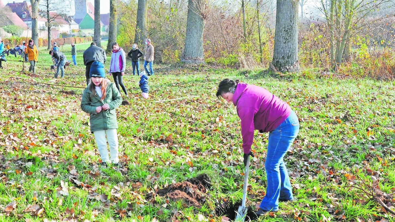 """Am """"Rupertsweiler"""" nahe der Altmühl wurde bei prächtigem Herbstwetter eine Streuobstwiese mit zwölf kleinen Apfel- und Birnbäumchen für zwölf kleine Ornbauer angelegt."""