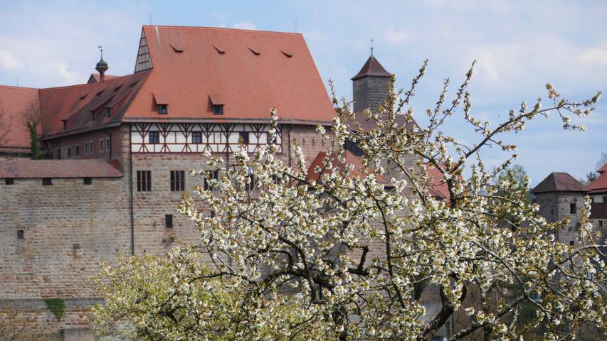 Malerisch präsentiert sich die Cadolzburg dem Betrachter, und das nicht nur im Frühjahr.