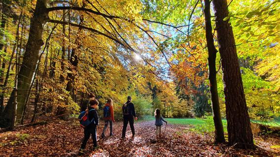 Minireise um die Ecke: Heute baden wir in unserem Wald