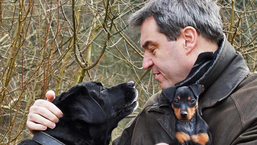 Söder 2016 mit seinen Hunden Fanny und Bella.