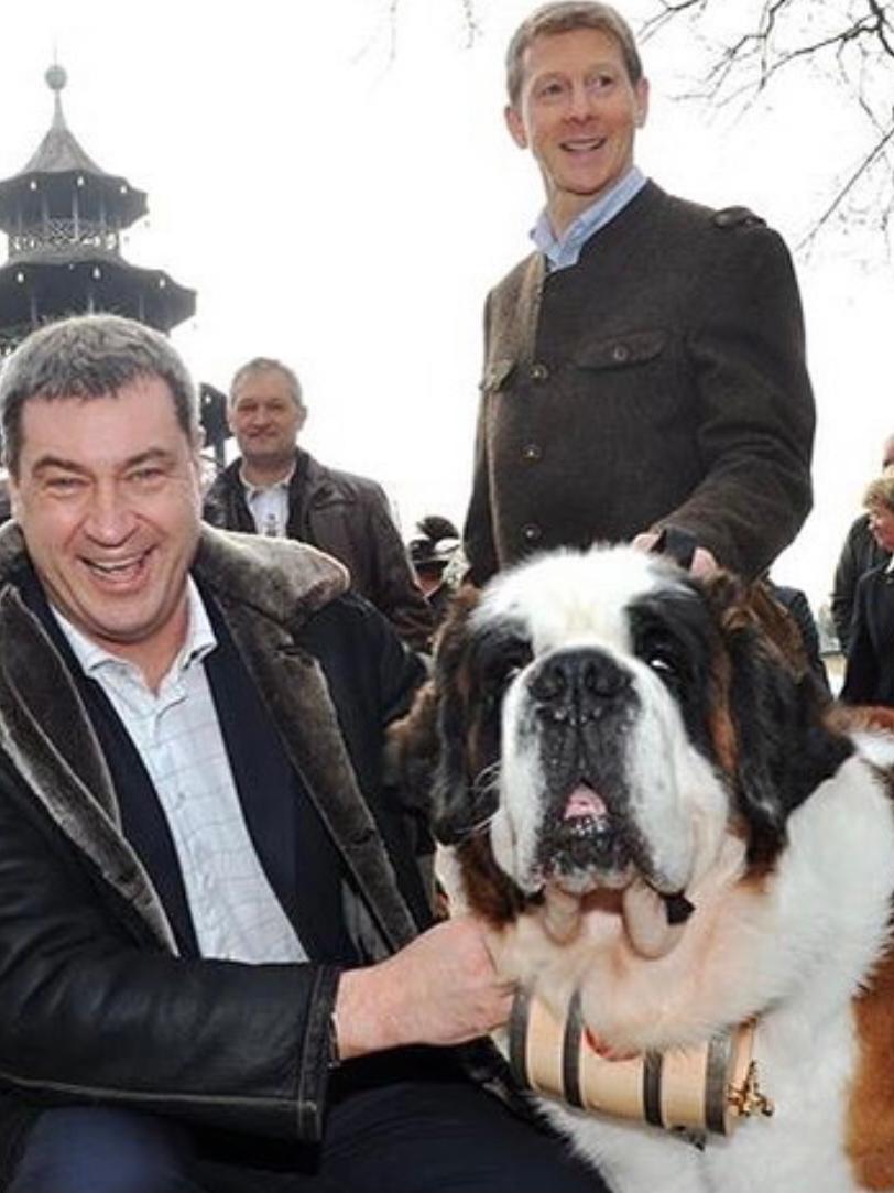 Hunde-Fan Söder mit einem Bernhardiner 2016.