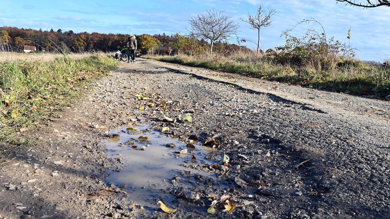 Der von Wanderern und Fahrradfahrern viel genutzte Höhenweg in Marloffstein ist in äußerst schlechtem Zustand.