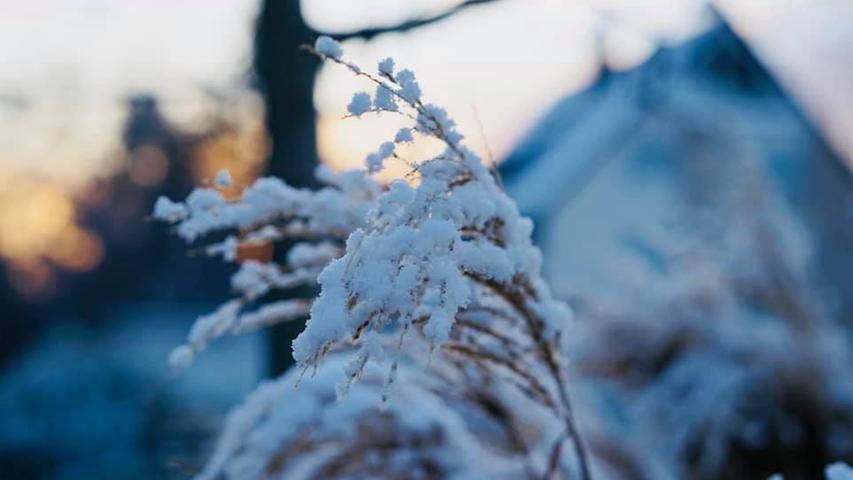 Der erste Schnee in Franken: Bilder unserer User