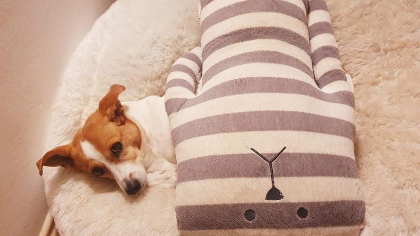 Bei dem kleinen Fratz fungiert das Kuscheltier gleich noch als Bettdecke.
