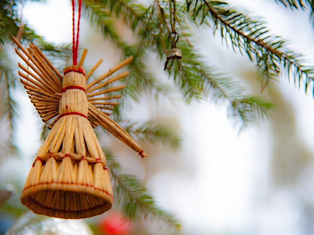 Foto: Stefan Reinmann Motiv: Der Christbaum im Birkenbühl - Eine fränkische Weihnachtsgeschichte aus  dem Aurach-Seebachgrund.