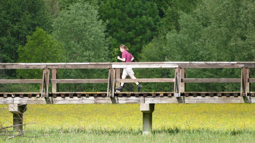 Das größte Natur-Kapital Fürths sind die Flussauen, hier beim Hardsteg über den Rednitzgrund...