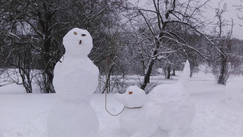 Schnee in Hetzelsdorf, Mister Snow und sein Entenhund gehen gassi..12.01.21....Foto: Anna Wehrfritz