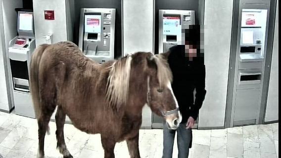 Stark alkoholisierter Mann bringt Pferd mit in die Sparkasse