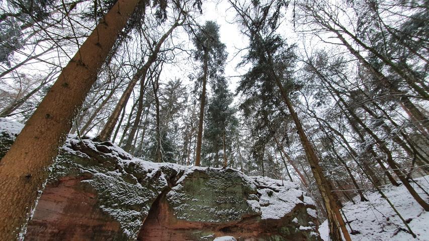 Der Steinbruch Katzenstein im Stadtwald bei Oberfürberg, ist über einen reizvollen Waldlehrpfad von der Försterei aus zu erreichen. Im Mittelalter wurde hier wie an etlichen anderen Orten der für die Region charakeristische Sandstein abgebaut.
