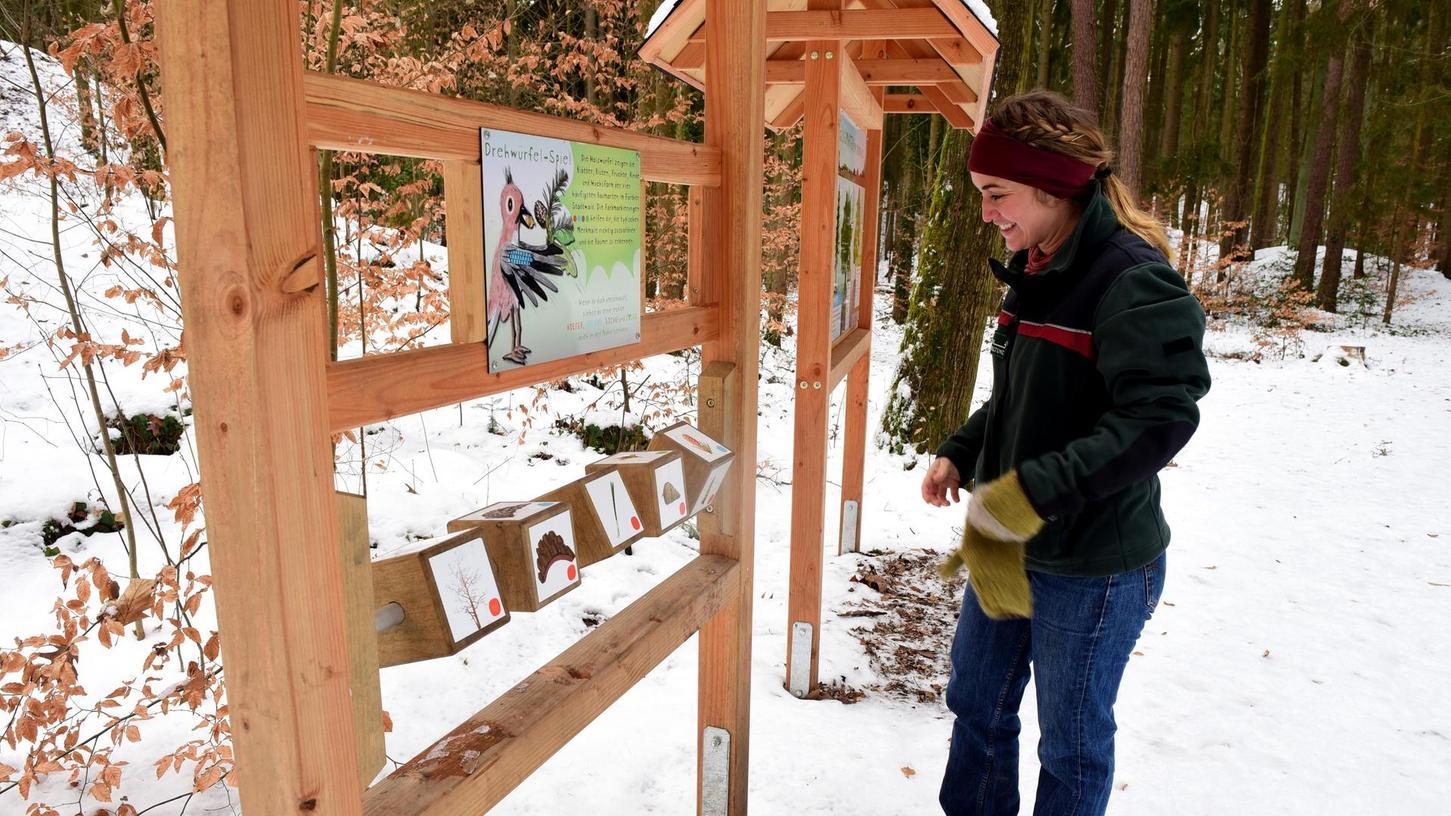 Ein neuer Prospekt stellt regionale Waldlehrpfade vor – auch Fürth ist vertreten. Unser Foto zeigt Franziska Maier vom Amt für Ernährung, Landwirtschaft und Forsten an einer der interaktiven Stationen.