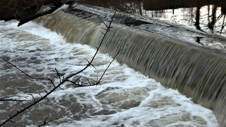 Störche, Enten, rauschendes Wasser: Hochwasserromantik im Aischtal
