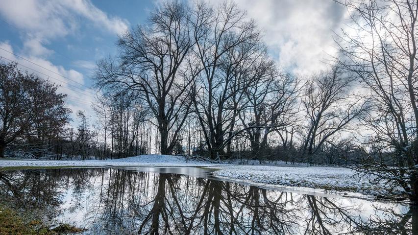 Bis hin zu den feinen Ästen spiegeln sich die Bäume am Hainberg im ruhigen Wasser.