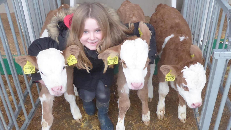 Tochter Marie hat die Geburt der drei Kälber namensLeonie, Marie und Annalena live miterlebt.