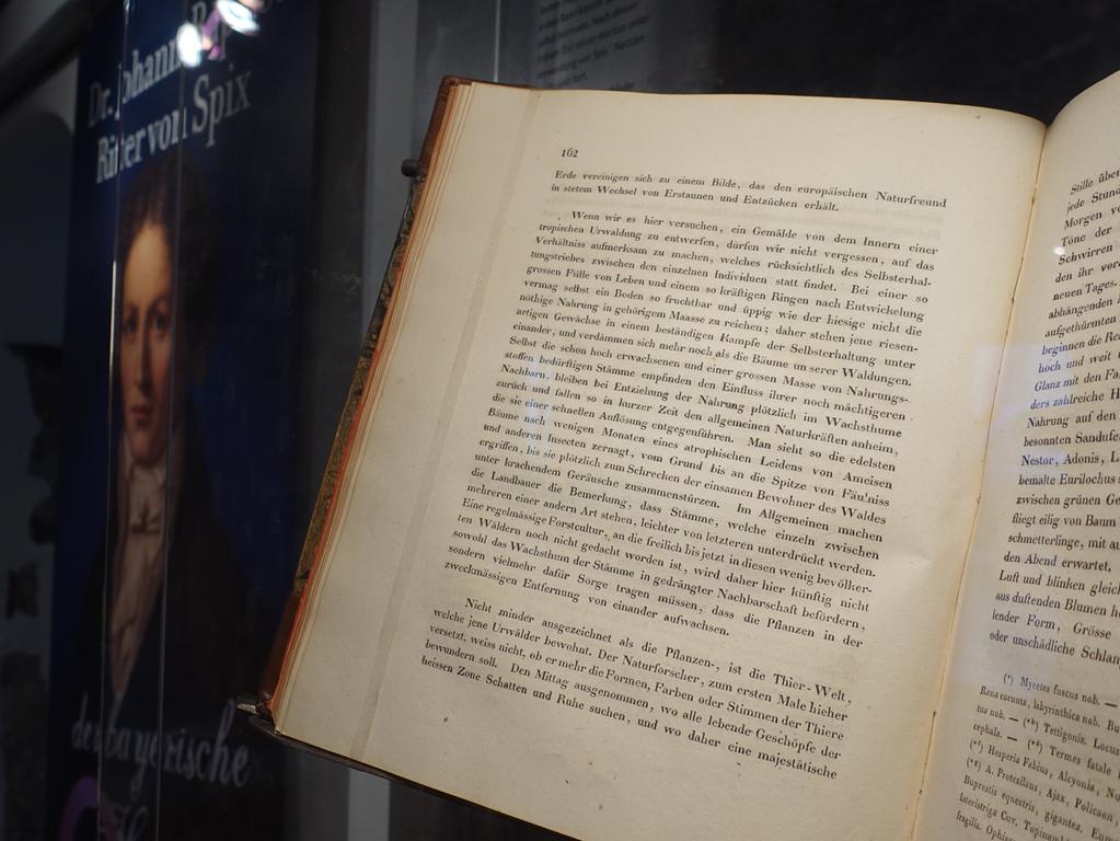 Foto: Edith Kern-Miereisz Motiv: Museumsserie, Spix-Museum Höchstadt, Vorstand Herbert Fiederling